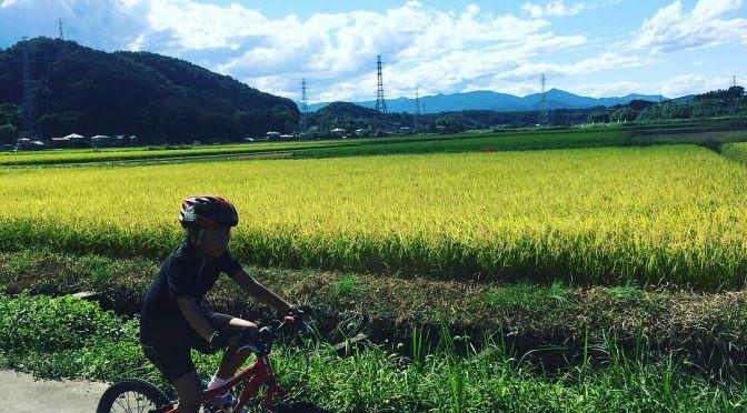 サイクリング 鞍掛橋~神戸~稲荷橋~サイクリングロード~大東文化坂~アピタ